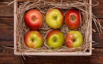 Как сохранить яблоки на балконе?