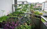 Полезные детали обустройства огорода на балконе