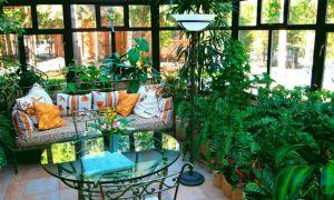 Как сделать зимний сад на балконе или лоджии