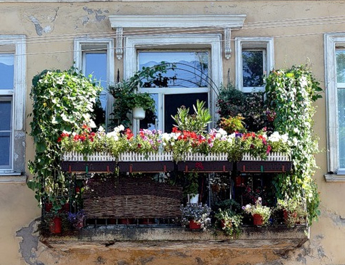 Озеленение неостекленной конструкции балкона