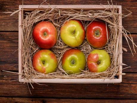 Хранение яблок на балконе в ящике